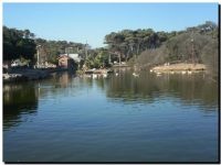 NECOCHEA: Lago de Los Cisnes