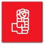 ELECCIONES 2009: Socialistas bonaerenses eligen autoridades partidarias
