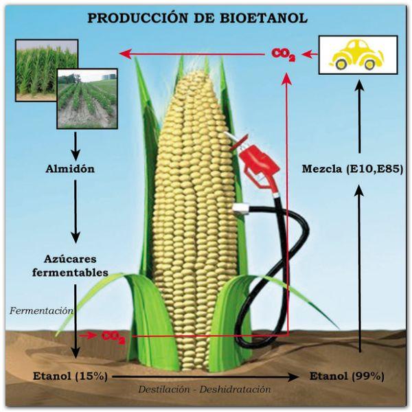 La producción de bioetanol alcanzó un nuevo récord histórico