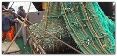 NECOCHEA: La problemática de la pesca