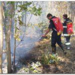 INCENDIOS: Refuerzan medidas de prevención de incendios forestales en zona rural