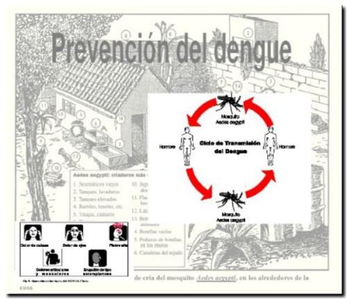 NECOCHEA: No hay dengue, pero se insiste en la permanente prevención