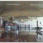 VUELOS: Desde mayo volverán los vuelos a Tres Arroyos y Tandil. Necochea aún no contará con ese servicio a pesar de haber sido la plaza más importante en los últimos años.