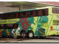 La Cámara Empresaria de Buses de Larga Distancia aseguró que la vuelta del servicio será gradual