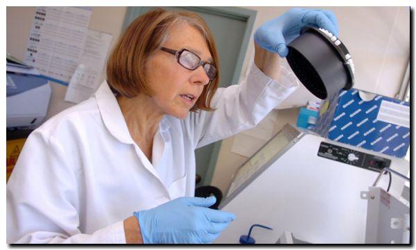 SALUD: Desarrollan test que detecta la tuberculosis en 4 horas