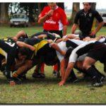 RUGBY: Continúan ganando los Tiburones. Necochea Rugby 34 – Pampas de Dolores  15