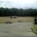 NECOCHEA: Deforestación del Parque Miguel Lillo. Indignación de vecinos