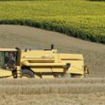 AGRO: Reducen el pronóstico para la cosecha de soja y maíz en los Estados Unidos