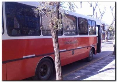 NECOCHEA: El municipio garantizó el transporte escolar con plata del fondo educativo
