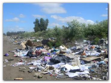 POLÍTICA: ¿Qué se hace con la basura en Necochea? la situación del basural a cielo abierto en 82 y 107