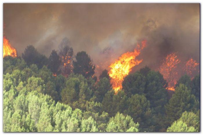 FUEGO: Incendio afecta al cerro de la Ventana