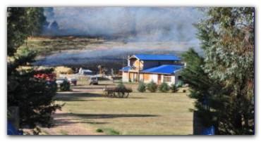 """INCENDIO: Desde Provincia afirman que está """"activo pero controlado"""" el incendio en Tornquist"""
