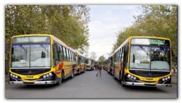 NECOCHEA: Transporte urbano de pasajeros