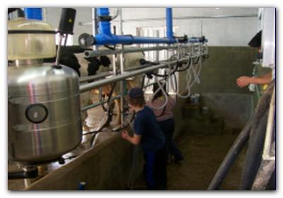 PROTESTAS: Los productores lecheros adelantan medidas de fuerza