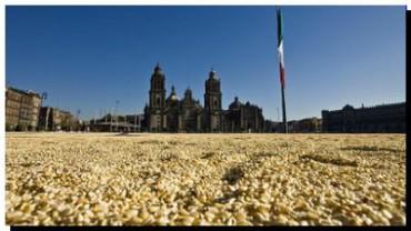 ECOLOGÍA: Los indígenas mexicanos que le ganaron una batalla al gigante Monsanto