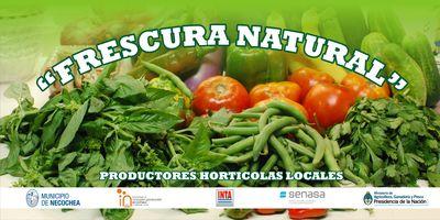 NECOCHEA: Un bolsón saludable y económico