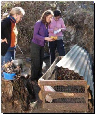 ECOLOGÍA: Con el compostaje, vecinos reducen la contaminación