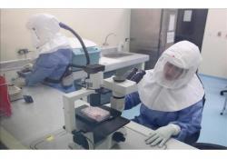ALERTAN que la Provincia no está preparada para atender posibles casos de ébola