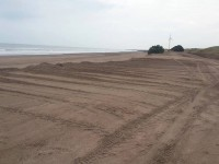 robo de arena