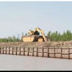 ECOLOGÍA: Más humedales, menos inundaciones