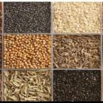 SALUD: Diez semillas con poderes nutritivos