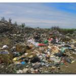 LOBERÍA: Hallaron un feto humano en el basurero Municipal