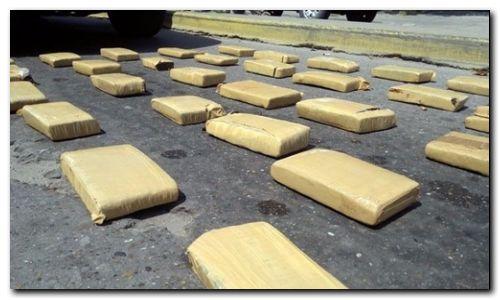 POLICIALES: Detuvieron a seis personas e incautaron más de 100 kilos de marihuana