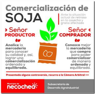Controversias por el grano de soja afectado