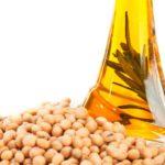 AGRO: Se prevé la peor cosecha de soja en una década