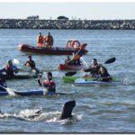 NECOCHEA: Recomendaciones náuticas