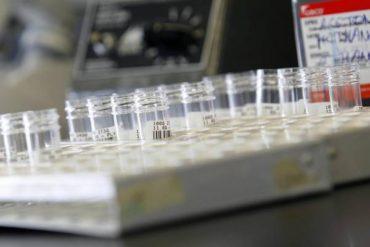 Estudiantes le dan una lección a un laboratorio