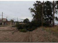 Desarrollo Humano asistió a vecinos que sufrieron el temporal de viento y lluvia
