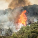 CHILE: Feroces incendios forestales acorralan la zona central
