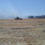 LOBERÍA: Emergencia y/o desastre agropecuario por sequía