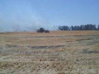 AGRO: Las probabilidades de sequía hacia fin de año crecieron a casi un 80%