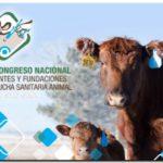 AGRO: Analizan situación de las Fundaciones Sanitarias