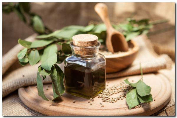 SALUD: Farmacias bonaerenses venderán aceite de cannabis