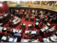 NECOCHEA: El Senado prestó acuerdo para cubrir vacantes judiciales