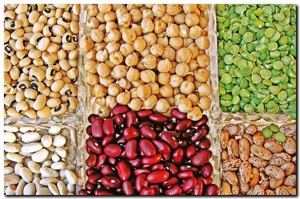 SALUD: Las legumbres previenen el cáncer