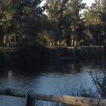 Silvia Guillot nos muestra la Ribera del Río Quequén