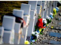 Nuevas identificaciones en el marco del plan humanitario Malvinas