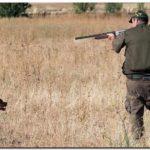 BUENOS AIRES: Habilitaron la caza deportiva menor