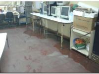 EDUCACIÓN: Según gremios, la mitad de las escuelas tiene necesidades de mantenimiento