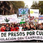 CANNABIS: Miles de consumidores marcharon por la despenalización del autocultivo
