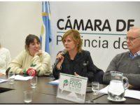 Presentan proyecto para garantizar prestaciones del IOMA