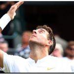 Del Potro dio otro paso firme en Wimbledon; cayó Schwartzman
