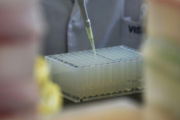EL MUNDO: China ordena una investigación tras nacimiento de bebés modificados genéticamente