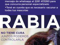 LOBERÍA: Prevención ante infección con rabia
