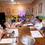NECOCHEA: Concejo en Comisión sobre la salud en el distrito
