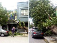 NECOCHEA: Intenso trabajo luego del temporal